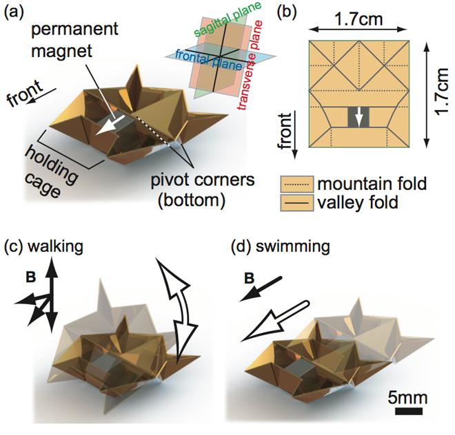 self-folding-origami-robot-MIT-3