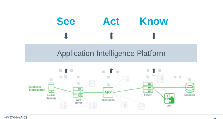 AppDynamics Foundations: See, Act, Know