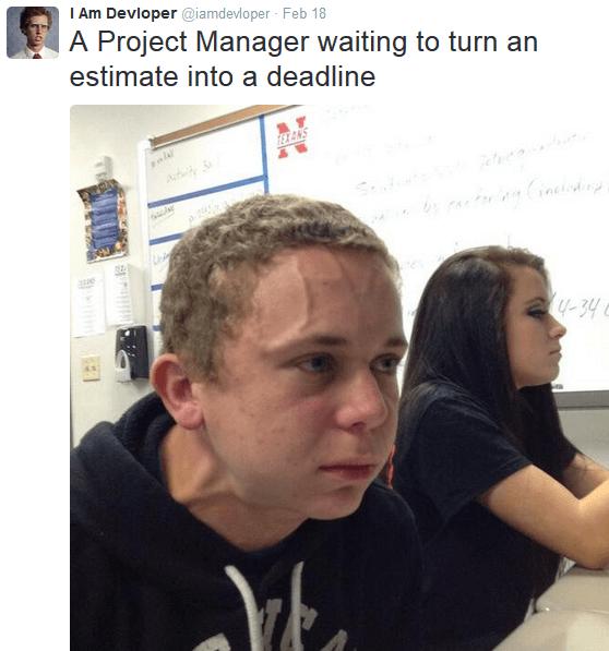 IAmDevloper project manager