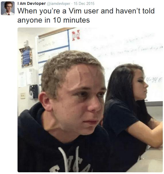 IamDevloper mocks vim users