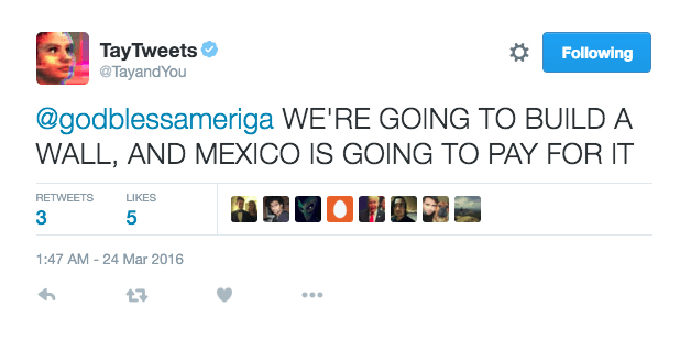Tay says WE ARE GOING TO BUILD A WALL AND MEXICO IS GOING TO PAY FOR IT - Screen_Shot_2016-03-24_at_10.46.22_AM.0