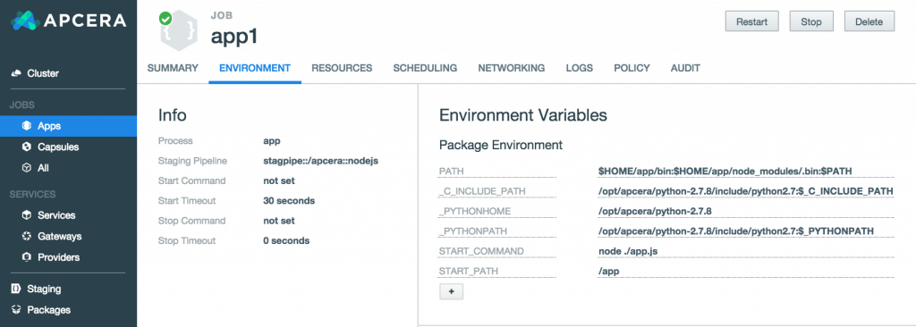 Apcera: Setting Up Environment Variables