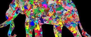 elephant-1302155_640