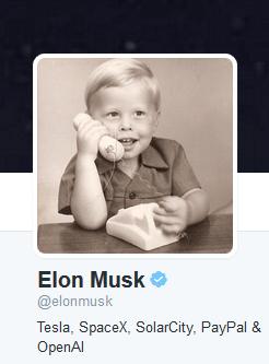 Elon Musk Twitter profile