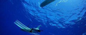 wave-glider-liquid-robotics-4