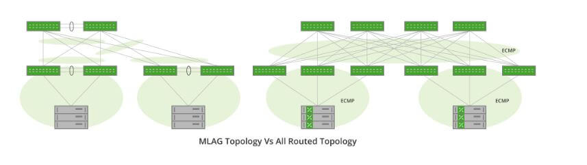 Ditch the Pitfalls of Layer 2 Networks by Routing on the