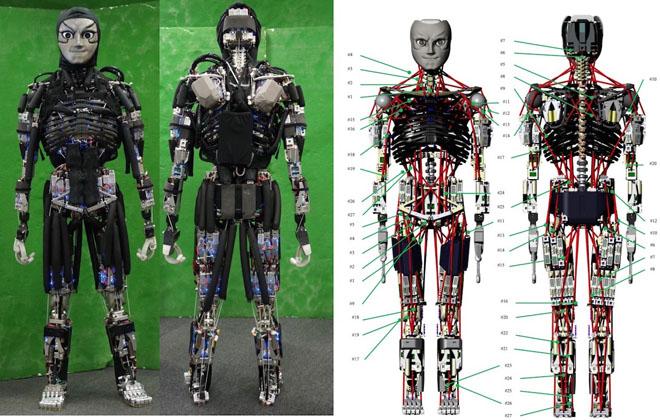 kengaro-robot-sweat-2