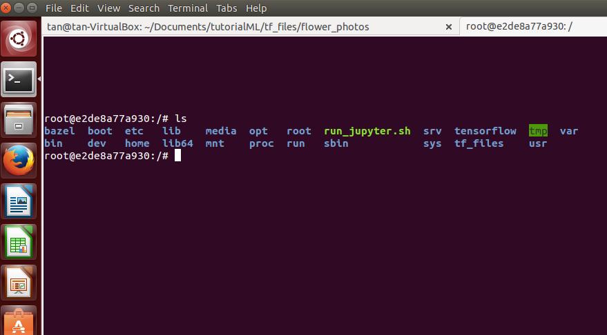 Docker File System