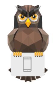 D'owl the developer owl - via VisionMobile